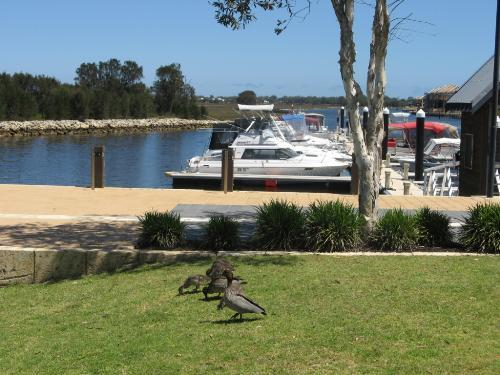 Property For Sale Mandurah 6210 WA 6