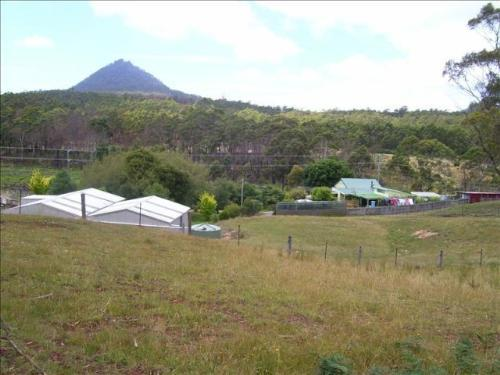 Property For Sale St Marys 7215 TAS 1