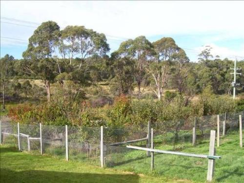 Property For Sale St Marys 7215 TAS 12