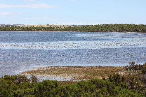 Property For Sold Pelican Lagoon 5222 SA 12