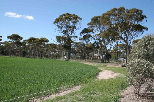 Property For Sale Hyden 6359 WA 12