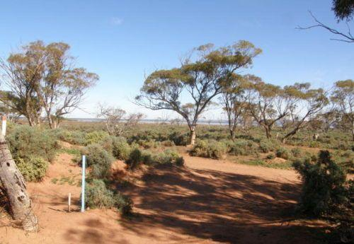 Property For Sale Port Augusta 5700 SA 7