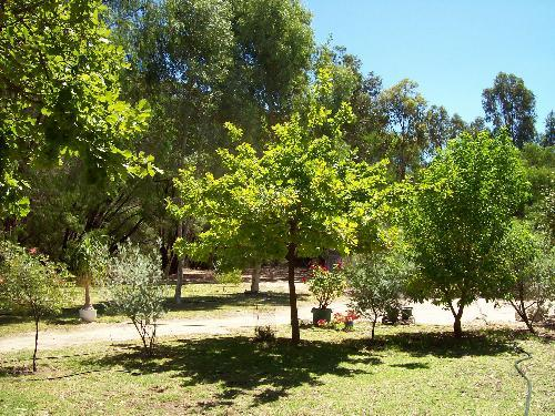 Property For Sold Lake Clifton 6215 WA 9