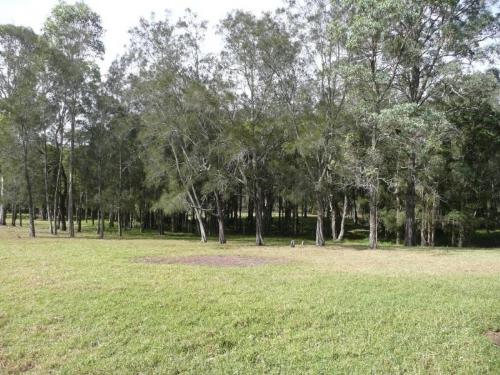 Property For Sold Morisset 2264 NSW 5