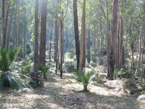 Property For Sold Batemans Bay 2536 NSW 3