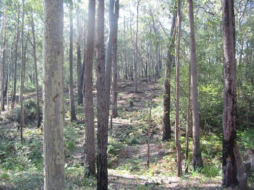 Property For Sold Batemans Bay 2536 NSW 7