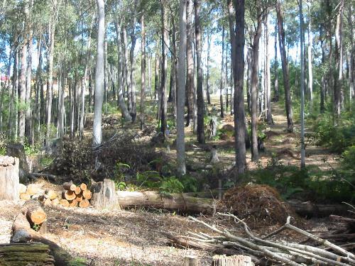 Property For Sold Batemans Bay 2536 NSW 8