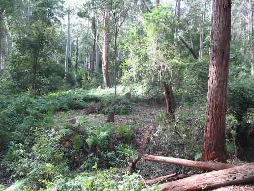 Property For Sold Batemans Bay 2536 NSW 9