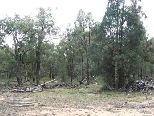 Property For Sold Gilgandra 2827 NSW 1