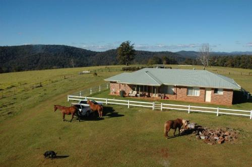 Property For Sold 116 Mollydale Road Tyringham NSW 2453 1