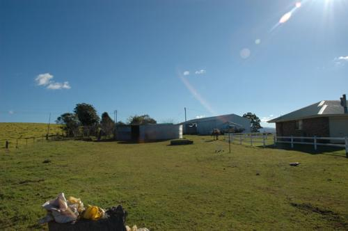 Property For Sold 116 Mollydale Road Tyringham NSW 2453 4
