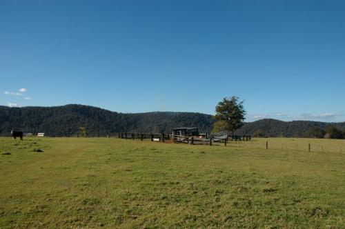 Property For Sold 116 Mollydale Road Tyringham NSW 2453 5