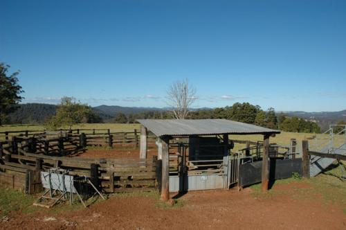 Property For Sold 116 Mollydale Road Tyringham NSW 2453 6