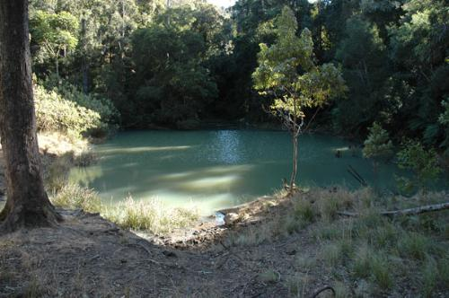 Property For Sold 116 Mollydale Road Tyringham NSW 2453 9