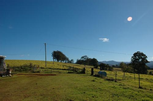 Property For Sold 116 Mollydale Road Tyringham NSW 2453 11