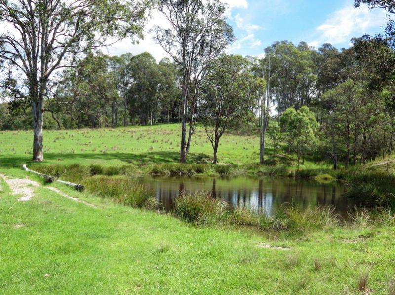 Property For Sold 116 Mollydale Road Tyringham NSW 2453 17