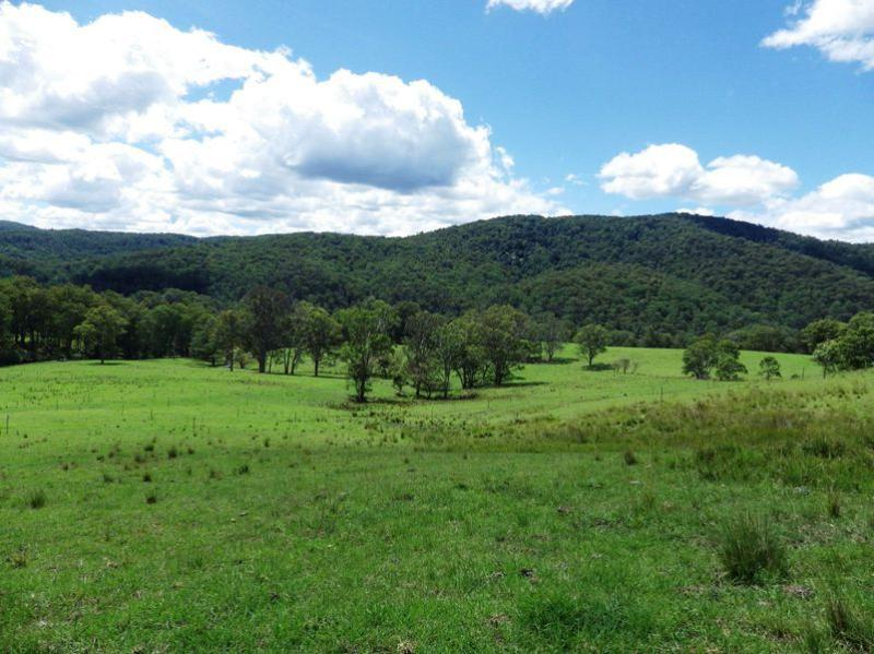 Property For Sold 116 Mollydale Road Tyringham NSW 2453 20