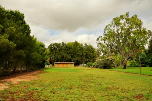Property For Sale Deniliquin 2710 NSW 3