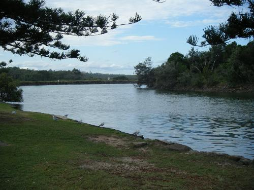 Private Business For Sale Brunswick Heads 2483 NSW 6
