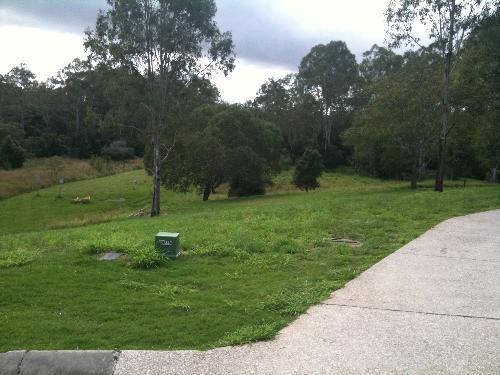 Bellbird Park 4300 QLD