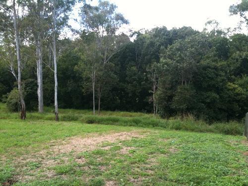 Property For Sale Bellbird Park 4300 QLD 3