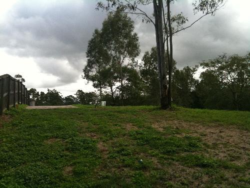 Property For Sale Bellbird Park 4300 QLD 5