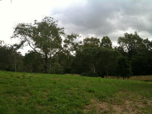 Property For Sale Bellbird Park 4300 QLD 7