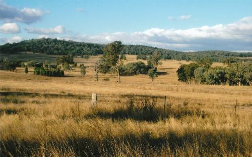 Property For Sold Neilrex 2831 NSW 6
