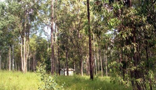 Property For Sold Bauple 4650 QLD 2