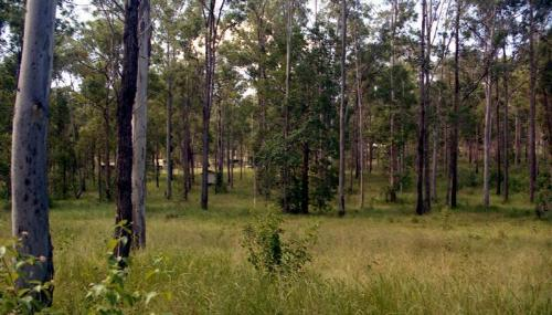 Property For Sold Bauple 4650 QLD 5