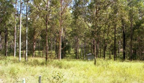 Property For Sold Bauple 4650 QLD 10