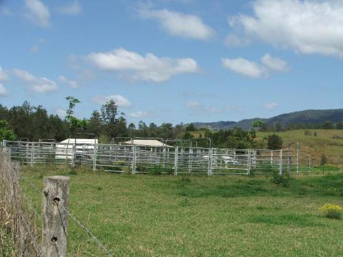 Property For Sold 3901 Taylors Arm Road Burrapine NSW 2447 8
