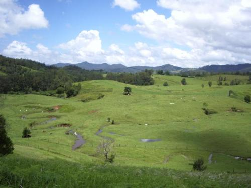 Property For Sold 3901 Taylors Arm Road Burrapine NSW 2447 9