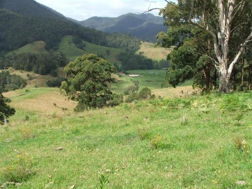 Property For Sold 3901 Taylors Arm Road Burrapine NSW 2447 13
