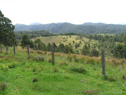 Property For Sold 3901 Taylors Arm Road Burrapine NSW 2447 14