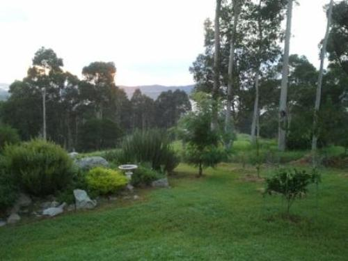 Property For Sold Nelligen 2536 NSW 2