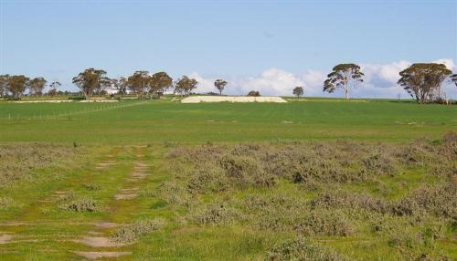 Property For Sold Meckering 6405 WA 3
