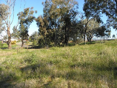 Property For Sold Albury 2640 NSW 3