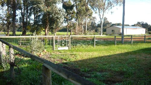 Property For Sold Mcalinden 6225 WA 2