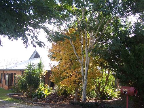 Property For Sold Cedar Grove 4285 QLD 5