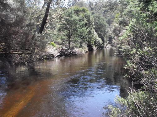Property For Sold Upper Esk 7214 TAS 1