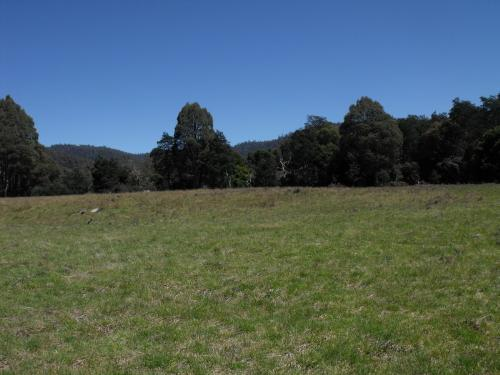 Property For Sold Upper Esk 7214 TAS 2