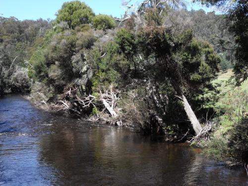 Property For Sold Upper Esk 7214 TAS 6