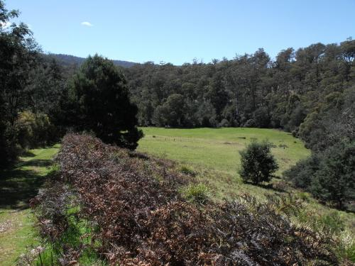 Property For Sold Upper Esk 7214 TAS 7