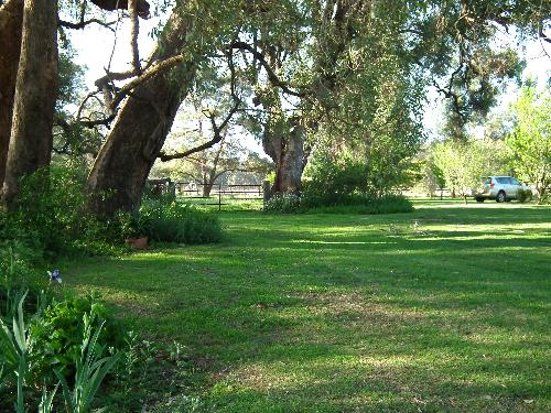 Property For Sale Coonabarabran 2357 NSW 6
