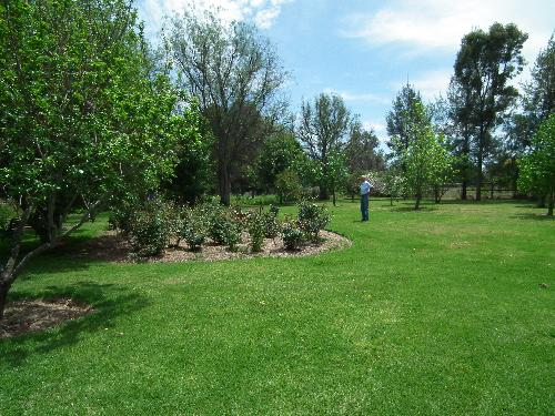Property For Sale Coonabarabran 2357 NSW 8