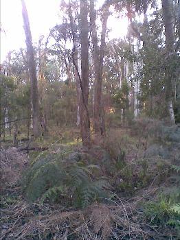 Woomargama 2644 NSW
