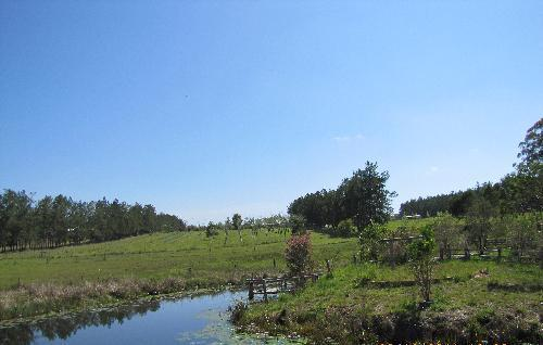 Property For Sold Kungala 2460 NSW 1