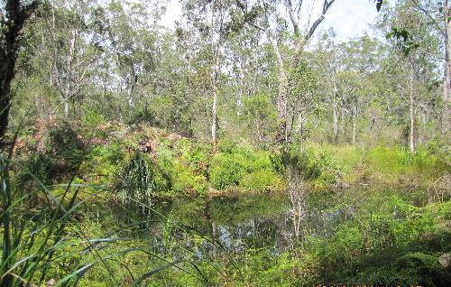 Property For Sold Kungala 2460 NSW 9