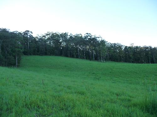 Property For Sold Bellangry 2446 NSW 4
